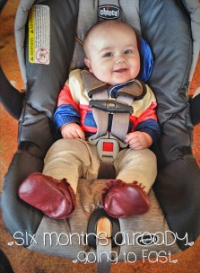 Life Lately: 6 Months In