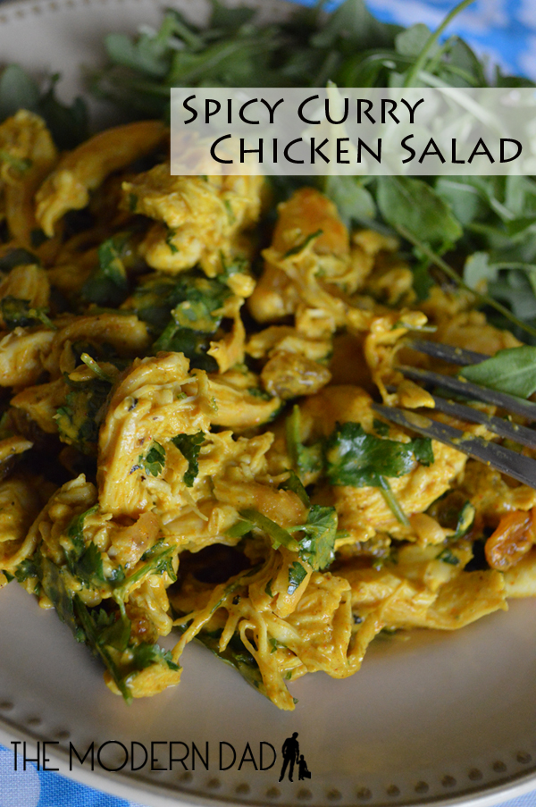 Spicy Chicken Curry Salad | The Modern Dad