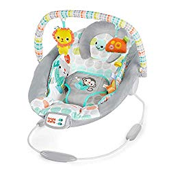 Bright Starts Whimsical Wild Cradling Bouncer